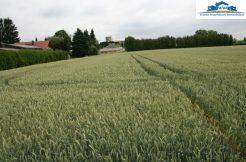 5 Baugrundstücke  in Töging verkauft 2011