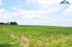 Landwirtschaftlicher Grund bei Mitterskirchen, verkauft 2018