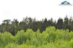 Wald bei Mitterskirchen, verkauft 2018