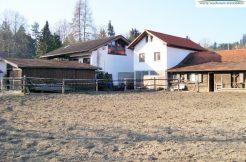 Pferdehof in Garching, verkauft 2017